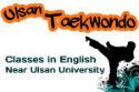 Taekwondo lessons in English