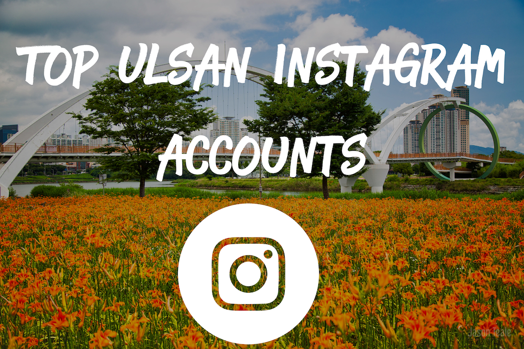 Top Ulsan Instagram Accounts that You Should FOLLOW!